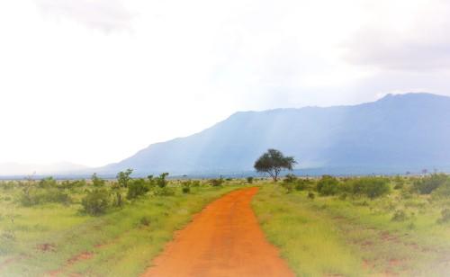 Orange road u (2)