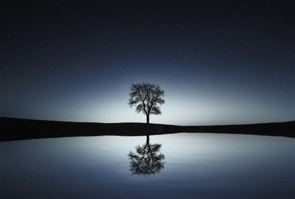 bw-tree